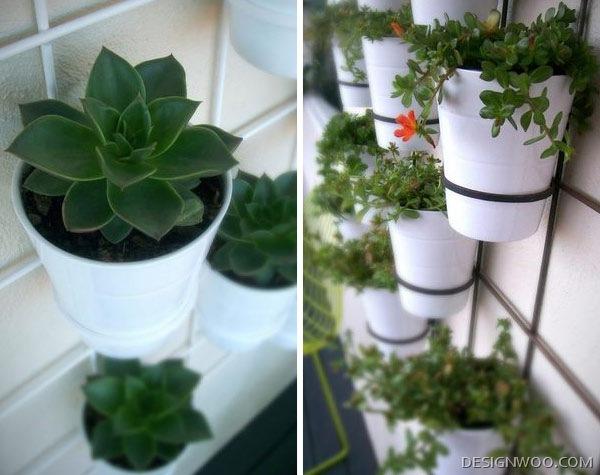 Insitu Wall Planters